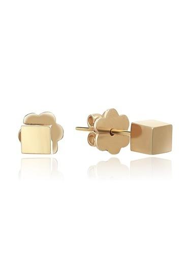 Piano Jewellery Gravity Pimli Küp Altın Küpe 14 Ayar Altın